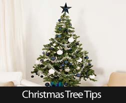 Christmas_Tree_Tips