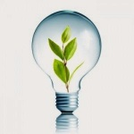 eco-led-bulb-300x300