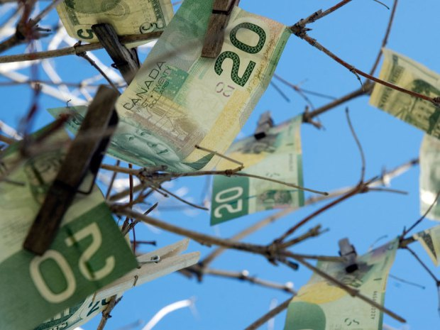 moneytree_thinkstock