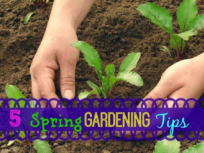 organic-Gardening1