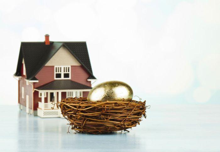 House-nest-egg-1000