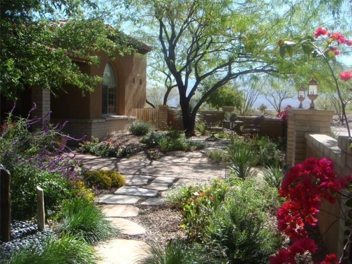 LEARN ABOUT XERISCAPING